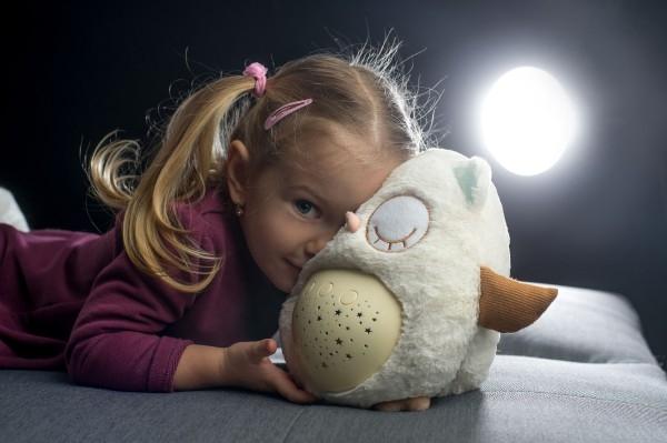 Sovička Usínáček plyš 25cm na baterie se světlem se zvukem v krabici 22x26x17cm 0m+