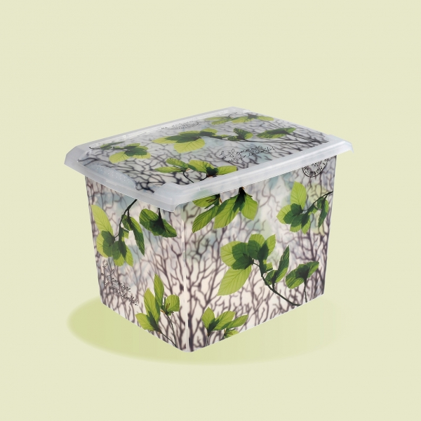 Plastový box Listy - 20,5l