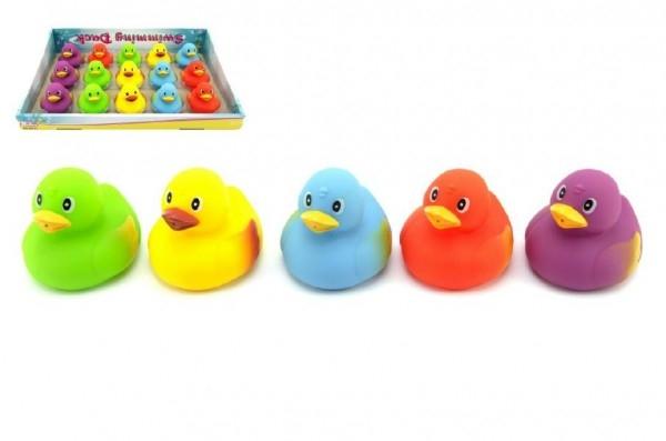 Plavací kačenka gumová 7,5cm asst 5 barev 15ks v boxu 18m+