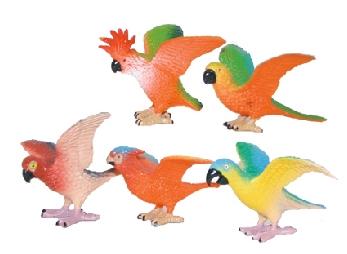 Papoušci, 5 ks v sáčku
