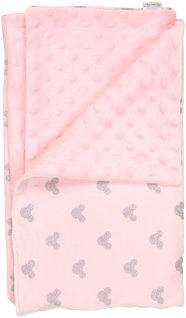 Dětská deka, dečka Little mouse 80x90 - MINKY, bavlna