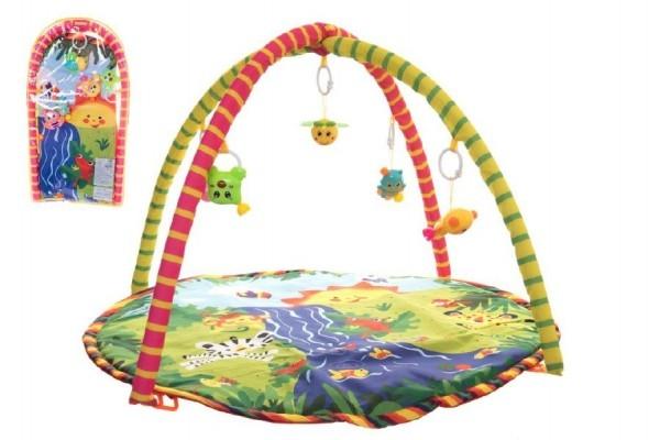 Hrací podložka/Hrazda pro děti a chrastítky plyš/plast v plastové tašce 38x68x6cm 18m